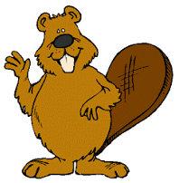beavers graphic image
