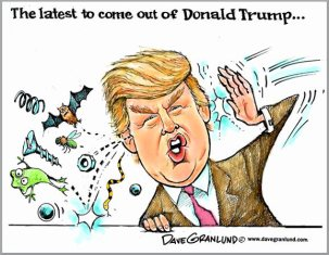 donald_trump_bats_screws_loose