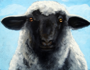 BlackFace-sheep