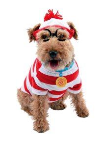 Wheres_Waldo_Dog_a